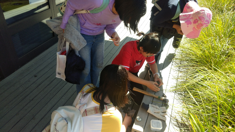 makerspace outdoors